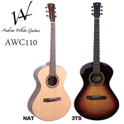 Andrew White Guitars AWC110 NAT/3TS【送料無料】【smtb-u】【ONLINE STORE】