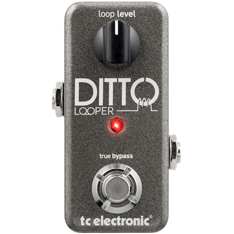 TC ELECTRONIC Ditto Looper (エフェクター/ルーパー)(送料無料)(マンスリープレゼント)【ONLINE STORE】