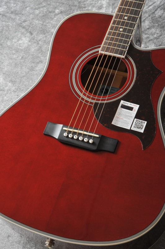 Epiphone FT-350SCE / Min-ETune Equipped (Wine Red)[EEATWRNH1]【送料無料】【ONLINE STORE】