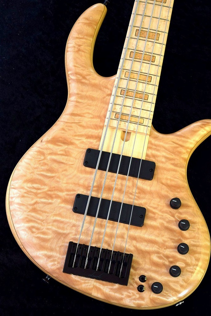 Elrick Gold Series e-volution 5st Quilted Maple/Swamp Ash,Birdseye Maple 【NEW】※軽量個体 !【日本総本店ベースセンター在庫品】