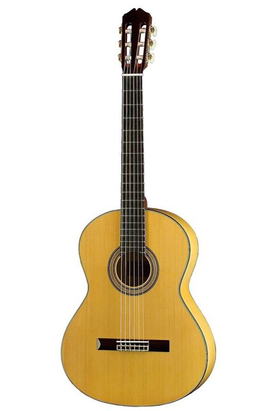お気にいる K.Yairi Nylon Series FG-10 FG-10 (N)(フラメンコギター)(送料無料)(お取り寄せ)【ONLINE Nylon STORE Series】, ワイン&地酒 TODA:727029ac --- adaclinik.com