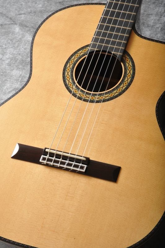 Takamine 300シリーズ DMP370NCN (gloss)《クラシックギター》【送料無料】【ONLINE STORE】