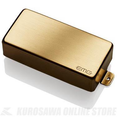 EMG ACTIVE HUMBUCKING PICKUPS 81-7H 〔7string Metal Cap Active Pickup〕(Brushed Gold)《エレキギター用ピックアップ/ハムバッカータイプ》【ONLINE STORE】