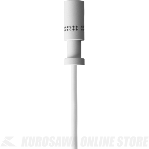AKG MicroLite Series LC81 MD white カーディオイド 《ラベリア(衣服装着用)タイプマイク》【送料無料】【ONLINE STORE】