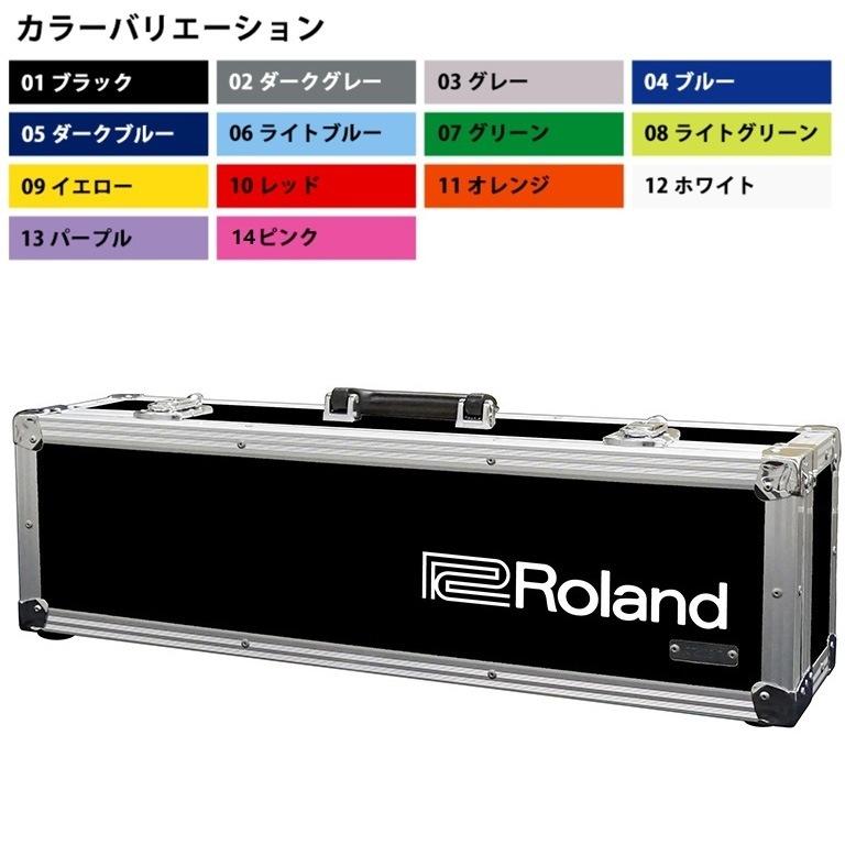 Roland TB-AE10 AE-10用ハードケース (受注生産品)(送料無料)【ロゴの有無/カラーをお選び下さい】 【ONLINE STORE】