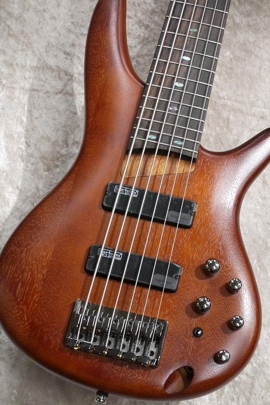 Ibanez SR506 -Brown Mahogany-【名古屋店在庫品】