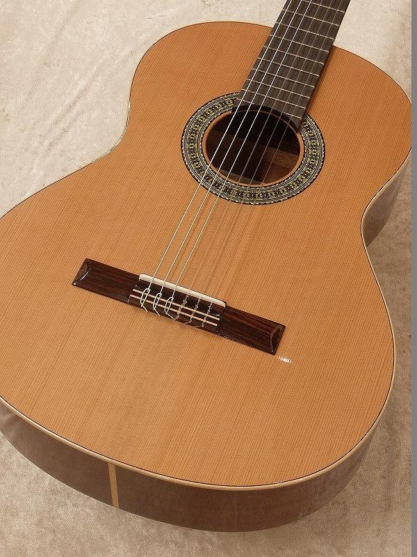 Paco Castillo / パコ・カスティージョ 201 7/8 《クラシックギター》 【送料無料】【名古屋店在庫品】
