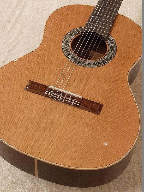 Paco Castillo / パコ・カスティージョ 201 3/4 《クラシックギター》 【送料無料】【名古屋店在庫品】