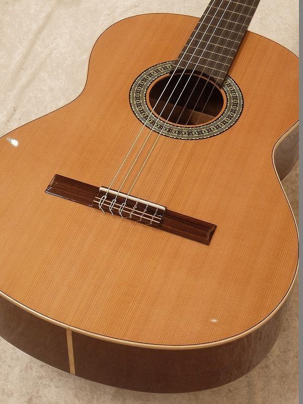 Paco Castillo / パコ・カスティージョ 201C 《クラシックギター》 【送料無料】【名古屋店在庫品】