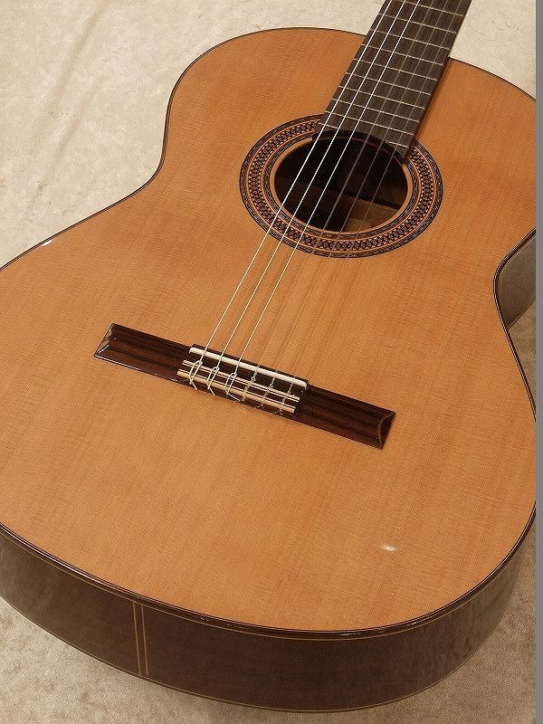 Paco Castillo / パコ・カスティージョ 203C 《クラシックギター》 【送料無料】【名古屋店在庫品】