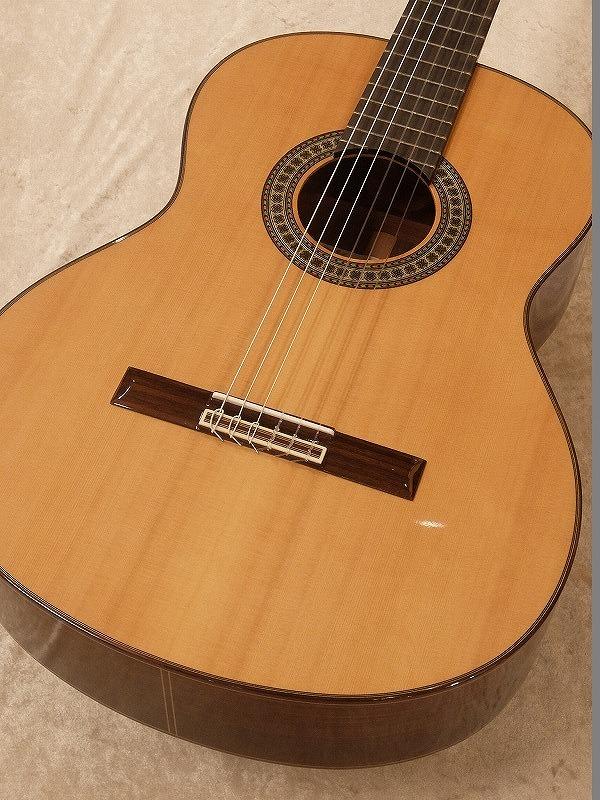 Paco Castillo / パコ・カスティージョ 204C 《クラシックギター》 【送料無料】【名古屋店在庫品】