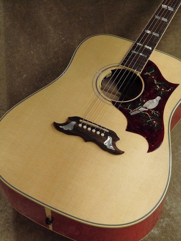 Gibson DOVE VOS Anthem【名古屋店在庫品】
