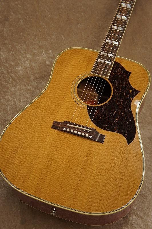 Gibson Sheryl Crow Country Western Supreme【名古屋店在庫品】