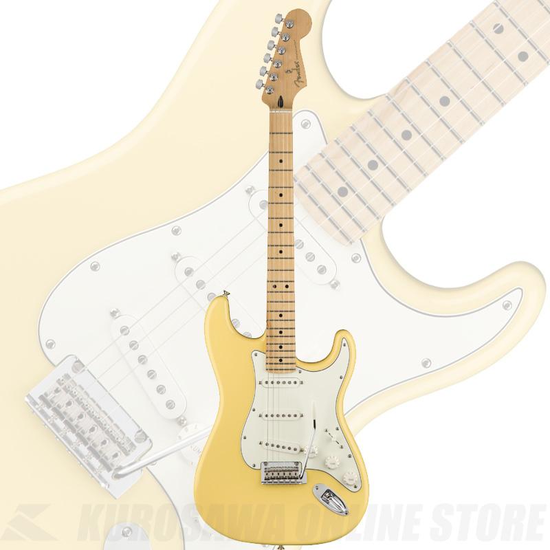 Fender Player Series Stratocaster Buttercream/Maple Fingerborad【送料無料】 【ONLINE STORE】
