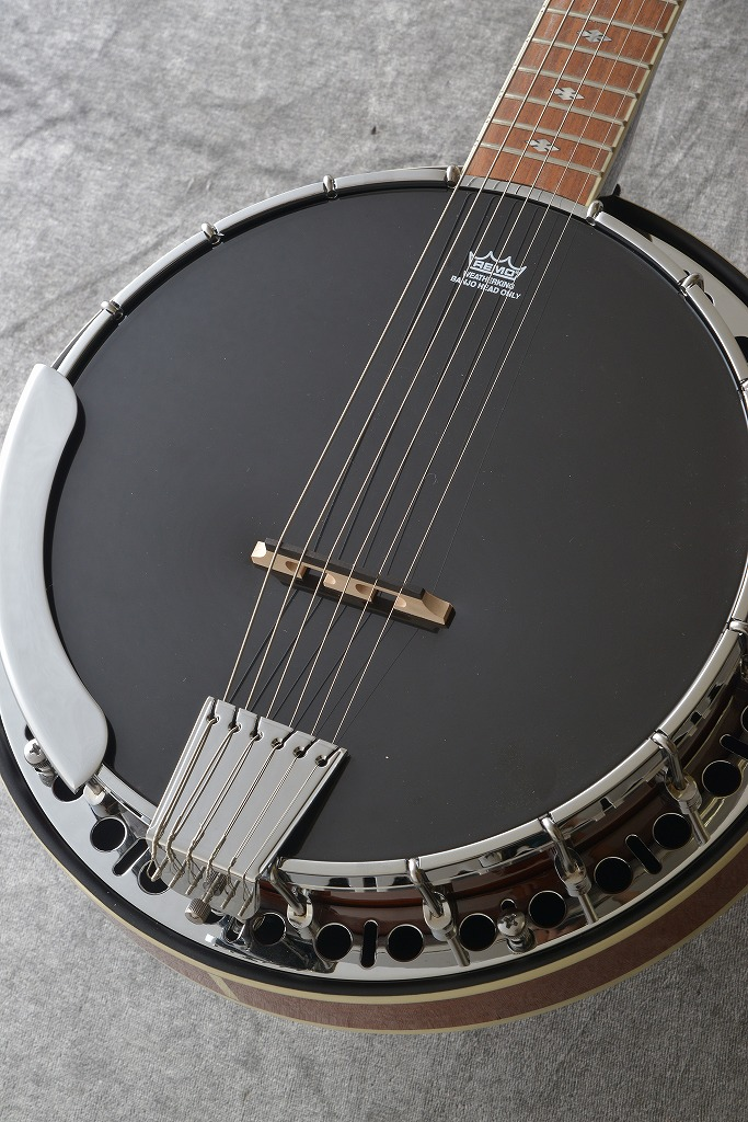 Epiphone エピフォン ギターバンジョー / STAGEBIRD Banjo (6-string; Electric)[EFB6MRCH1]【現品限りの特別価格】【ONLINE STORE】
