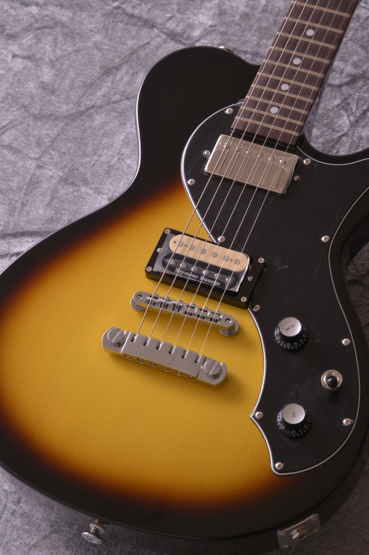 FgN J-Standard FL Series JFL-FT-HH/BDB 《エレキギター》【送料無料】【ONLINE STORE】