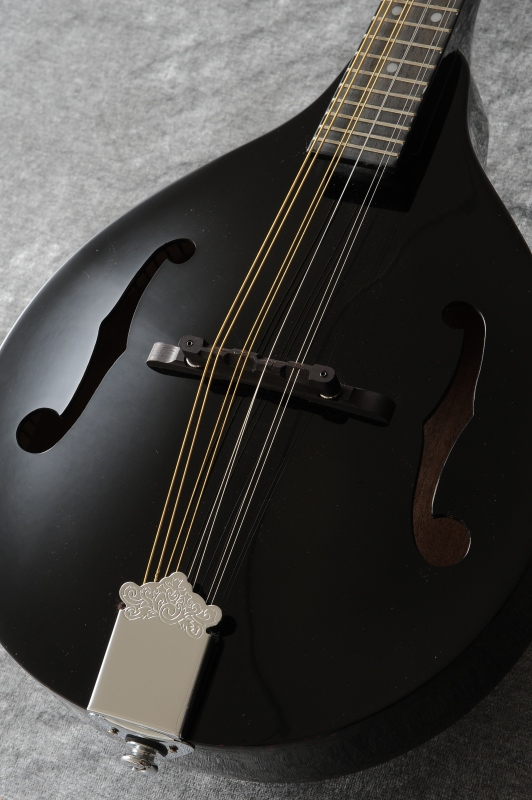 DEAN Tennessee A/E Mandolin (Classic Black)[TNAE CBK](ご予約受付中)【送料無料】【ONLINE STORE】