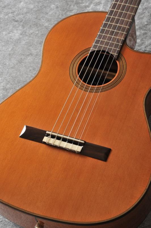 【まとめ買い】 Cordoba Series Fusion 12 Natural 《クラシックギター》 Natural【送料無料 STORE】 Fusion】【次回入荷・ご予約受付中】【ONLINE STORE】, ザッカ ミント:a8a375bc --- annhanco.com