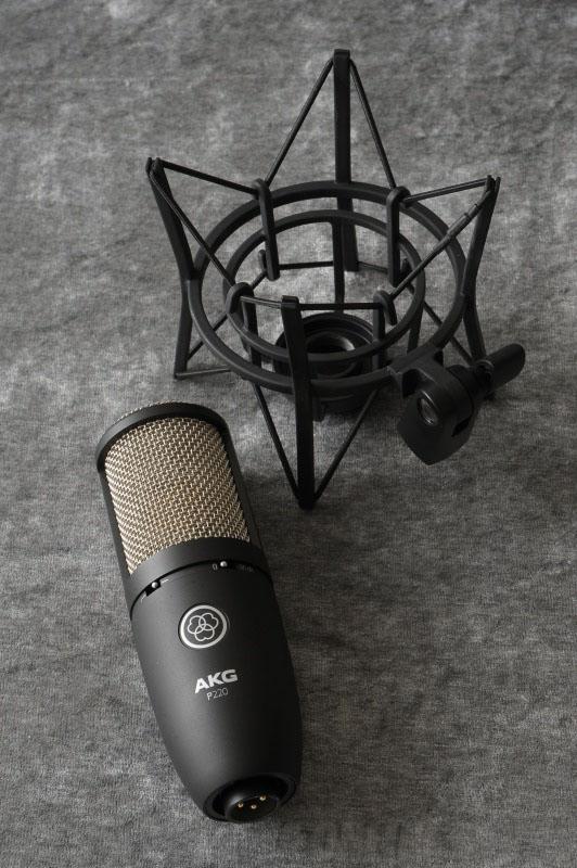 AKG Project Studio Line Series P220 《コンデンサーマイク》【送料無料】【ONLINE STORE】, 村山市:242835e9 --- unitedmmjcoalition.com
