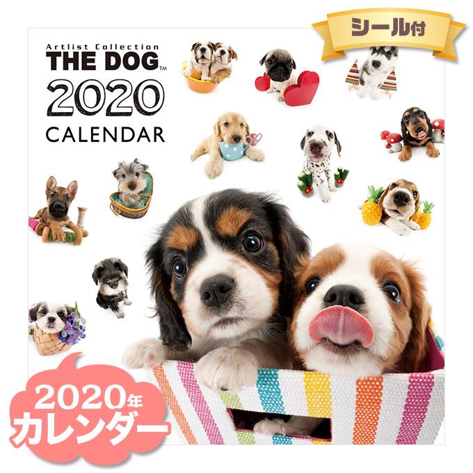 2020年カレンダー販売開始!人気のDOG&CAT♪他にも!ウサギ・ハリネズミ・小鳥・カエルetc