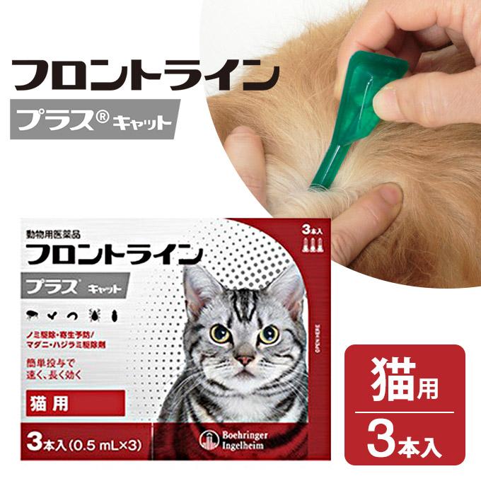 日本産 メリアル ジャパン フロントラインプラス 犬用 特売 3P 最も多くの獣医師に選ばれているノミ マダニ駆除薬 同梱不可 シラミ駆除 CAT 猫用 ノミ 動物用医薬品 ダニ