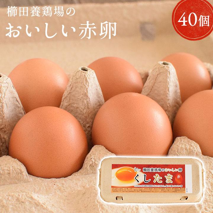 櫛田養鶏場のこだわり卵 くしたま 愛知 尾張 養鶏場直送で超新鮮な卵をうまれたての卵をお届け致します 新鮮 おいしい 安全 ブランド卵に負けない赤卵 \臭みのないおいしい卵 赤卵 40個入り 36個 普段使い 櫛田養鶏場の自家配合飼料を食べてうまれた美味しい赤卵 たまご 玉子 普段使い用 卵 食品 鶏卵 2020A/W新作送料無料 破卵保障4個 いつでも送料無料 パック包装 送料無料