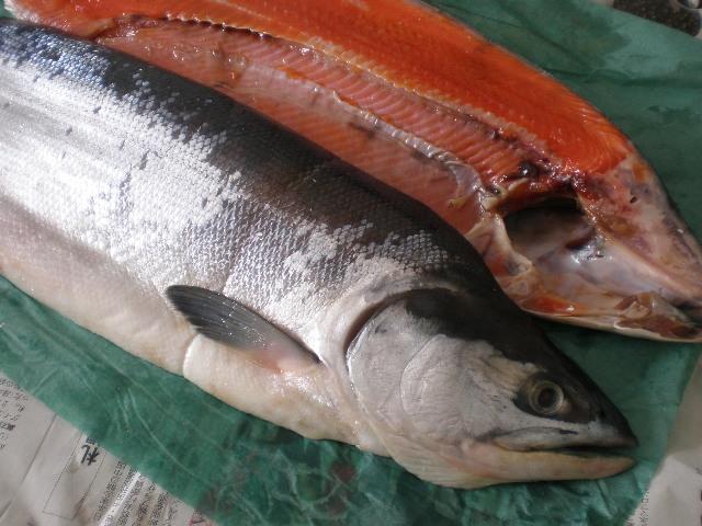 北海道 釧路◆超特価◆紅鮭 薄塩