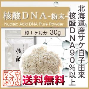 〓送料無料〓《国産・高純度》『 核酸DNA 30g(粉末タイプ)』合成品不使用!!【国産】天然の鮭(さけ)白子由来核酸DNA含有量90%以上!!【HLS_DU】【あす楽_土曜営業】【05P03Dec16】