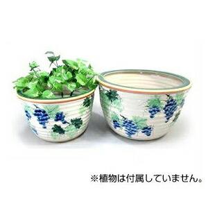 【陶器水蓮鉢2点セット ぶどう】睡蓮鉢 (SL05/2BC1)