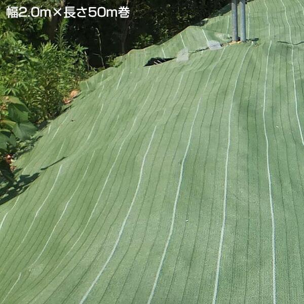 【防草シート グランドバリアクロス-7 幅2.0m×長さ50m巻】