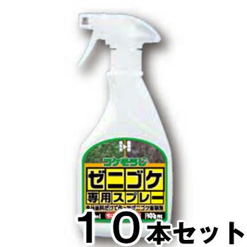 【ゼニゴケ専用スプレー 500ml 10本セット】コケそうじ 除草剤