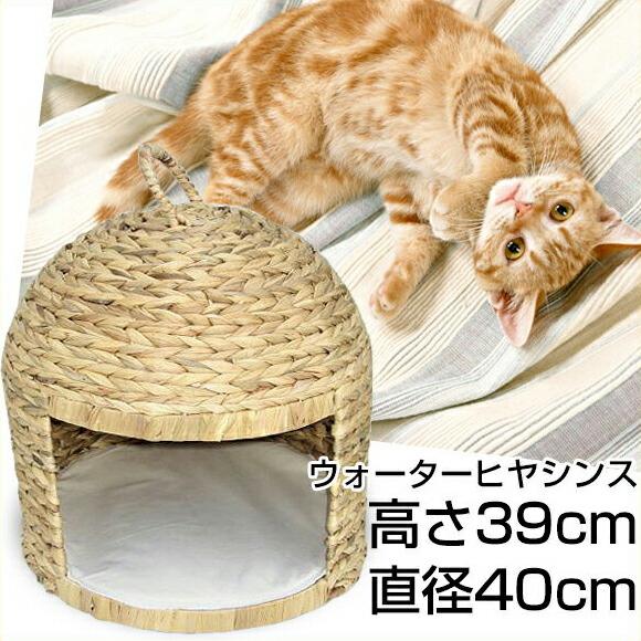 【猫ちぐら ウォーターヒヤシンス】ペットハウス