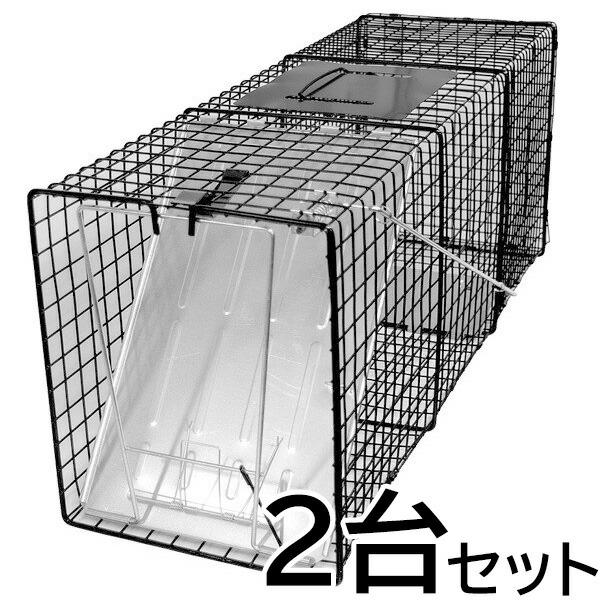 【踏板式 捕獲器 改良型(ブラック)2台セット】(W26×H31×D81cm) アライグマ ハクビシン 対策