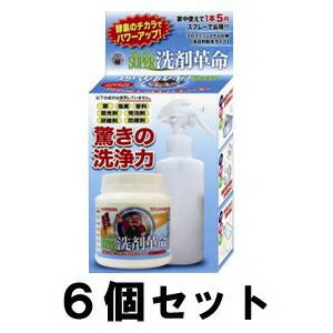 【SUPER洗剤革命 300g 6個セット】スプレーボトル付き!スーパー洗剤革命! ※代引不可