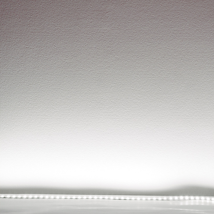 LEDテープライト 5m 白 昼光色 6500K LEDテープ SMD5050 正面発光 間接照明 看板照明 陳列照明 足元灯 棚下照明 バーライト DIY自作