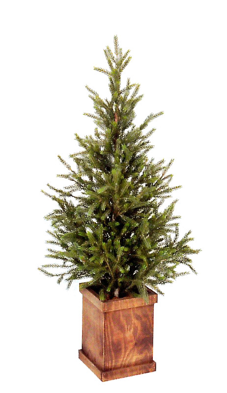 ※代引不可【送料無料】木箱付き モミの木120cm(屋内用)クリスマスツリーにも最適!飲食店等の店舗内装 店舗装飾 ディスプレイ 間仕切り 目隠しに!(G-419-120)