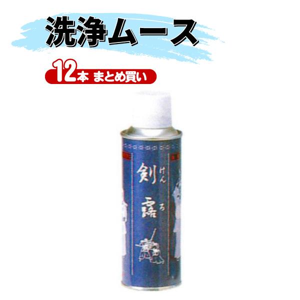 【送料無料】ヒロヤ 剣道 洗浄ムース 剣露 220ml【12本まとめ買い】M-C2