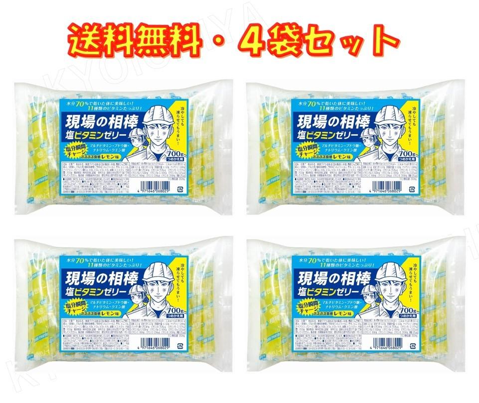 海外並行輸入正規品 最新号掲載アイテム 熱中症対策 塩分チャージ 現場の相棒 塩ビタミンゼリー 詰替え700g入り 塩 送料無料 ビタミン ×4袋