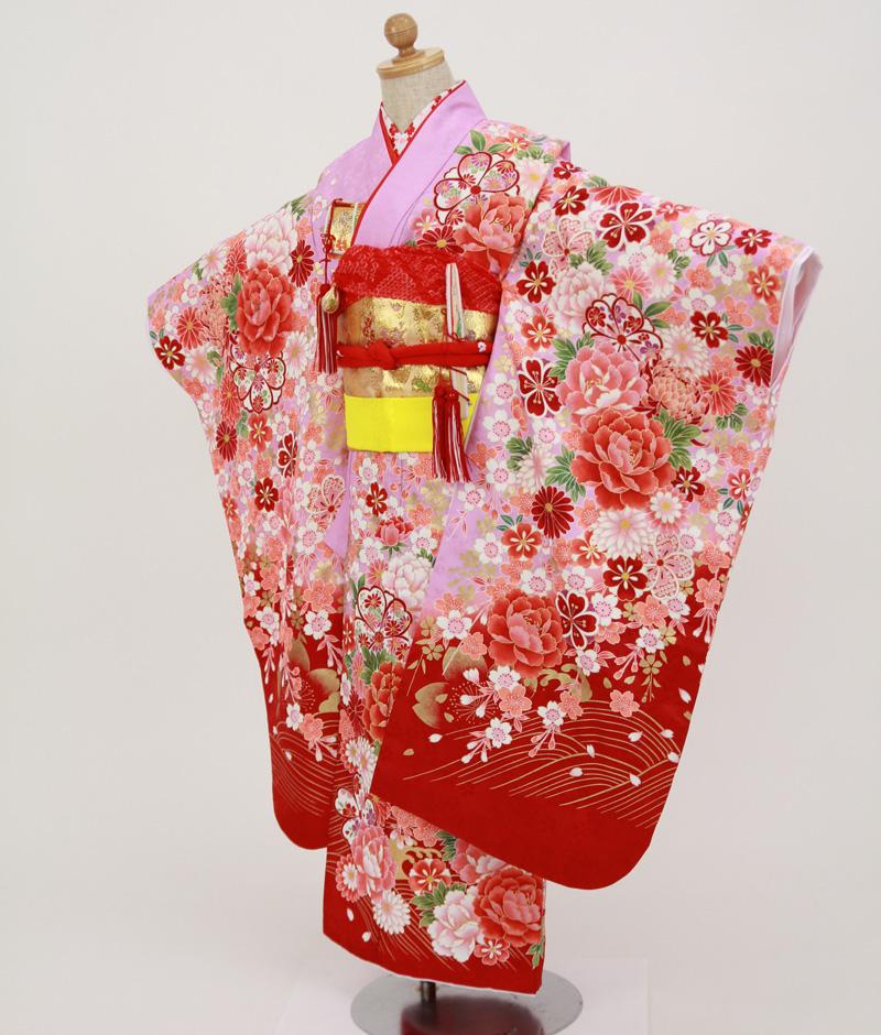 七歳用七五三レンタル 薄紫地に牡丹・菊と桜【帯】金色