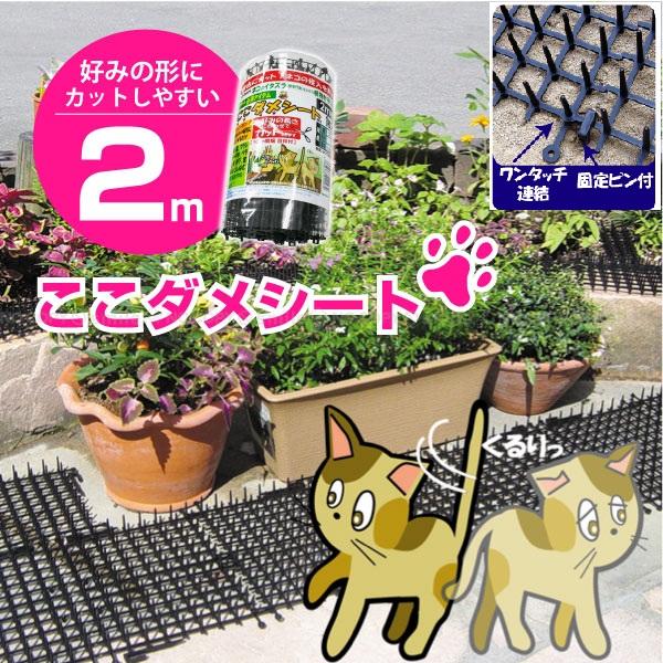 オンラインショッピング 自由にカット 野良猫対策に ネコのイタズラなどから植物を守ります 39ショップスーパーセール協賛 ファッション通販 快適生活猫よけ 6個まで同梱可能売れてます 2m巻 1個巾30cmx長さ2mx高18mm送料¥880 ここダメシート