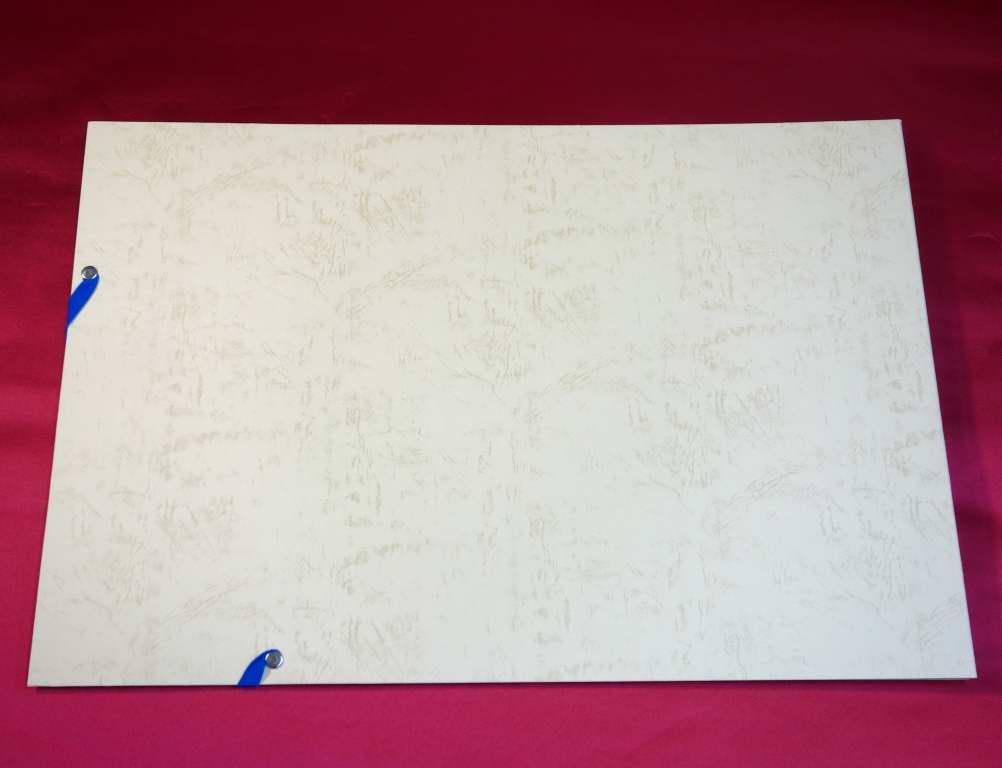 賞状・通知簿ファイル 50枚収納用 賞状ファイル 通知簿 図画 半紙 保管 収納 A3 クリーム(虹箔文字入り)表紙 思い出 キレイ 子供用 成績表