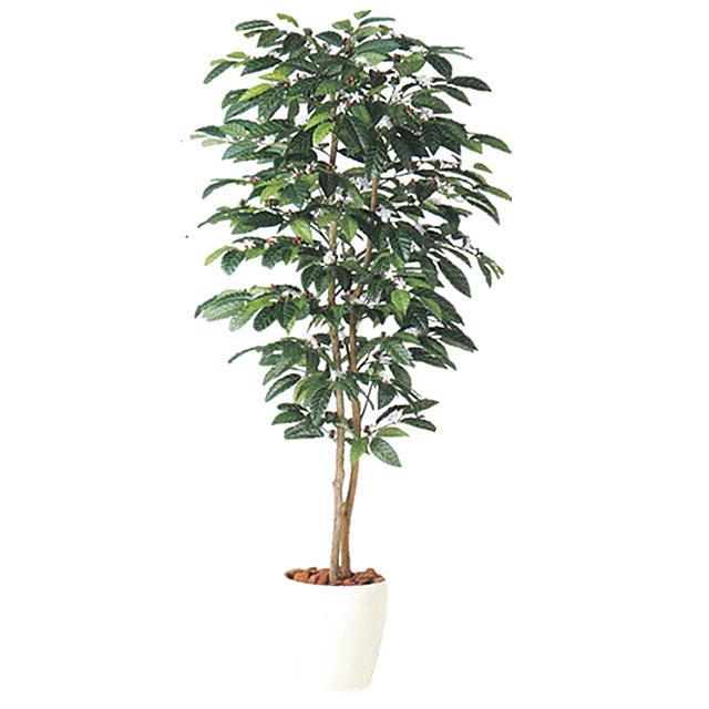 ●代引き不可 送料無料【98989】光触媒 珈琲の木 人工観葉植物 触媒加工あり 92880