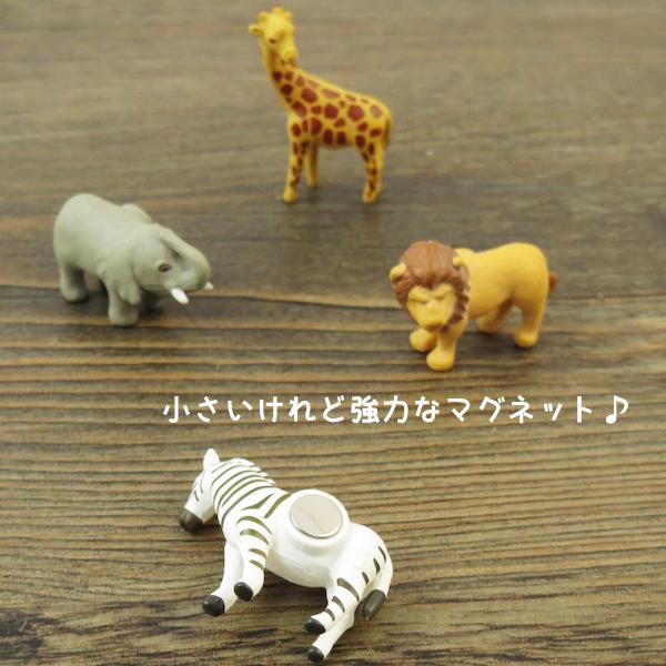 宓 designphil 强大的微型磁铁 safari (Safari 句柄)