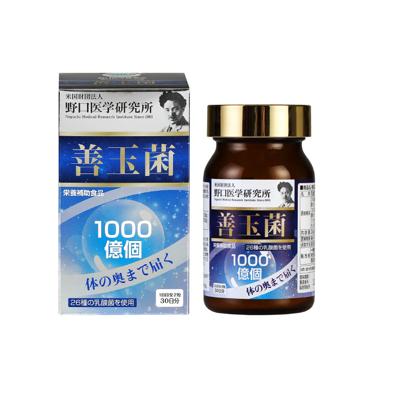 新品 野口医学研究所 善玉菌 完全送料無料 60粒