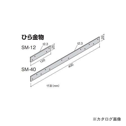 【運賃見積り】【直送品】カネシン ひら金物 (100枚入) SM-40