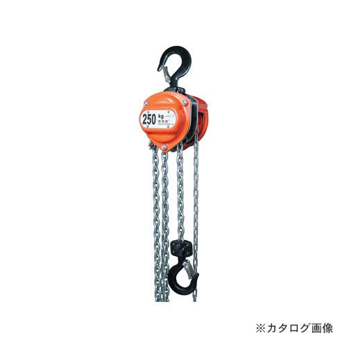 HHH スリーエッチ R-CB0.25TON チェーンブロック 定格荷重0.25t 揚程2.5m