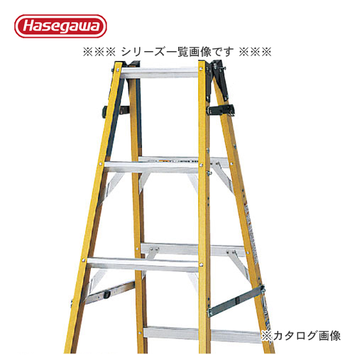 【直送品】ハセガワ 長谷川工業 はしご兼用脚立(電気工事・電設作業用)RG-12A 15479