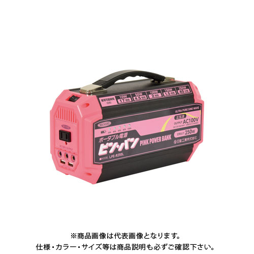 【日動工業大決算セール】【お買い得】日動工業 ポータブル電源 ピンバン 屋内型 (AC100V・DC12V・DC5V) LPE-R250L