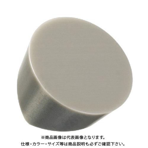 サンドビック T-Max 旋削用セラミックチップ 6060 10個 RCGX120700E:6060