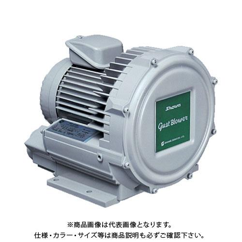 【直送品】 昭和 電動送風機 渦流式高圧シリーズ ガストブロアシリーズ(0.3kW) U2V-30S